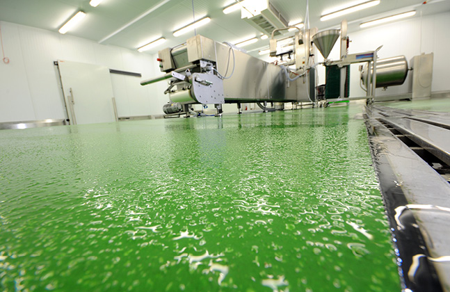 Discover Slip Resistant Flooring Solutions to FoodTech 2016