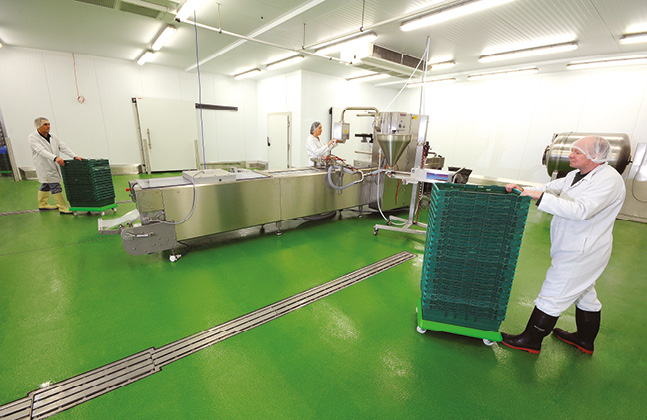 Food Safe Flooring Message for the F&B Industry5