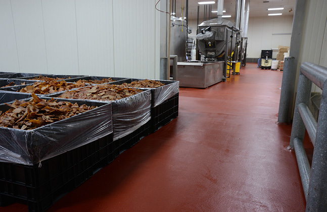 Example of Failing Floors in Food Manufacturing2