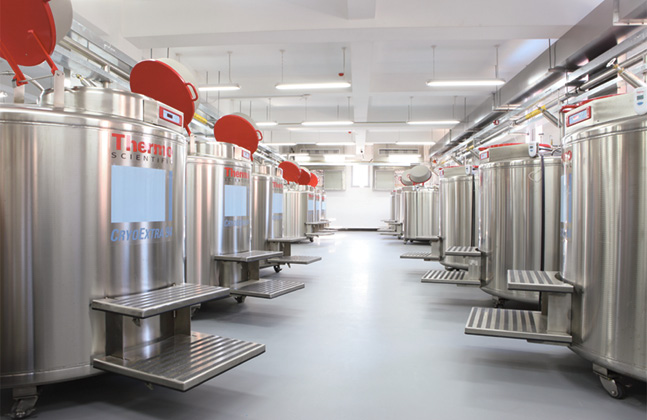 Top Coving Tips for Food & Beverage Facilities