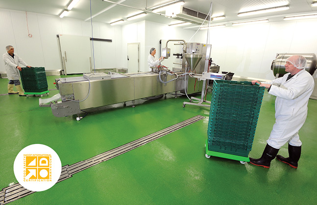 What Makes the Best Brewery Floor? Flowcrete Australia Explains in its Latest Whitepaper